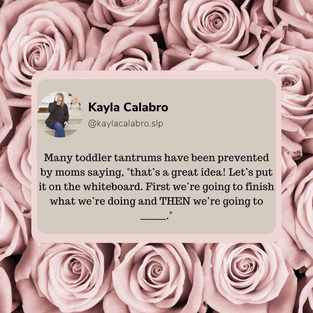 A quote by NH Speech Therapist, Kayla Calabro, about how to stop toddler tantrums